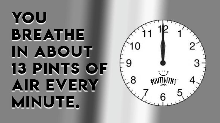 FF - 9-18-18 - FINAL-We breathe in 13 pints of air per minute ...
